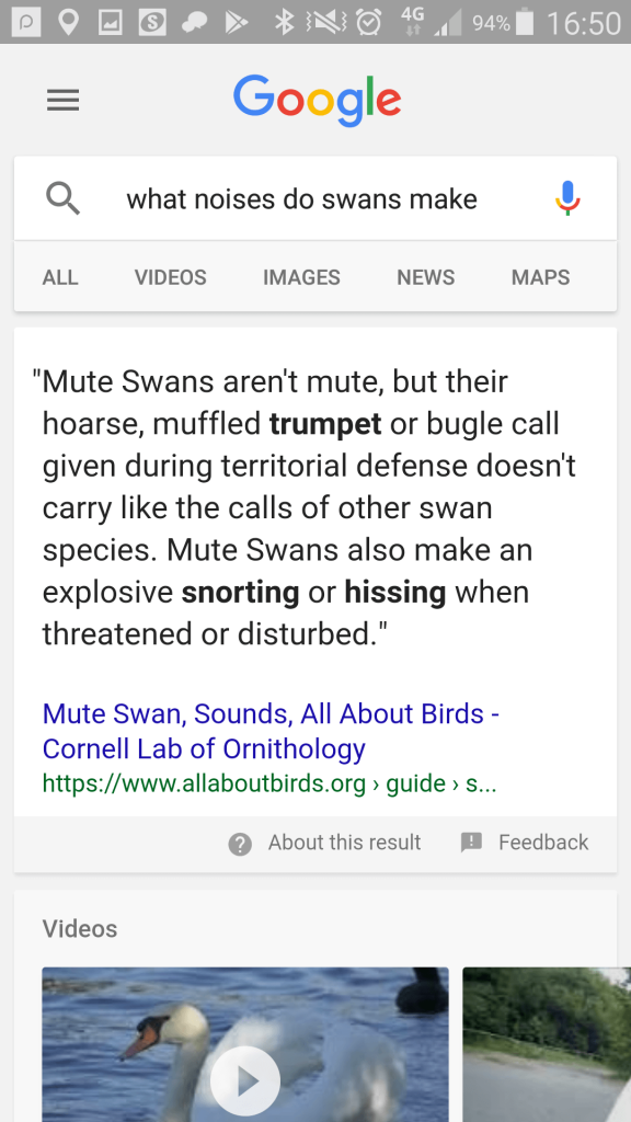 "Google mobile search: ""what noises do swans make?"""